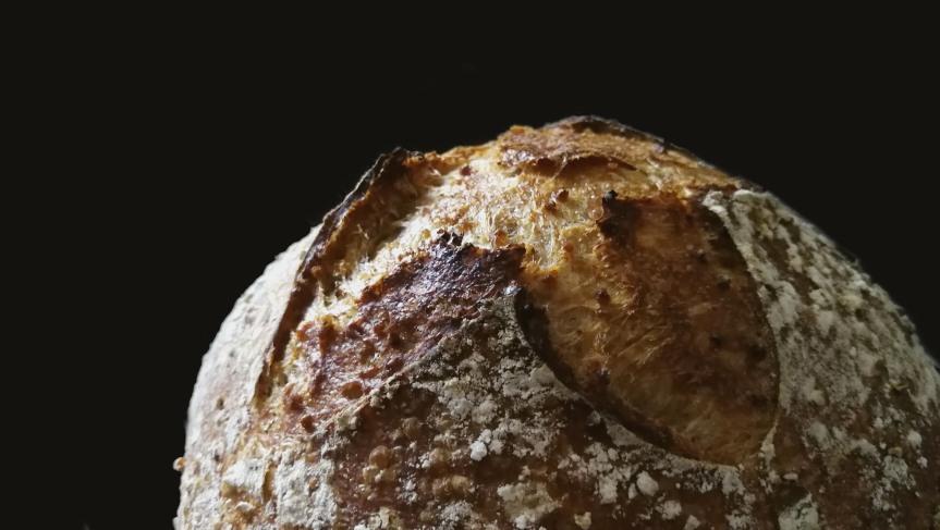 Toasted Millet PorridgeSourdough