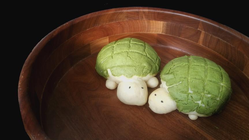 Matcha Turtle Melon Pan (Turtle ShapedBread)